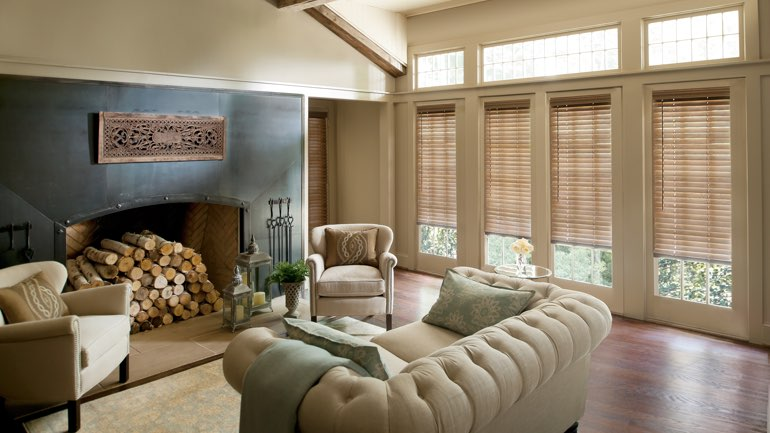 Tampa living room with blinds