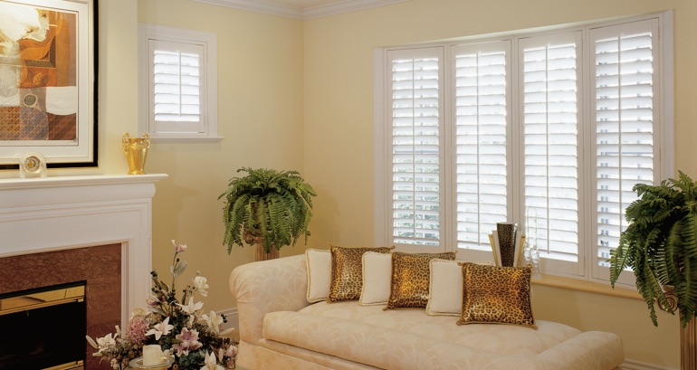 Tampa living room shutters