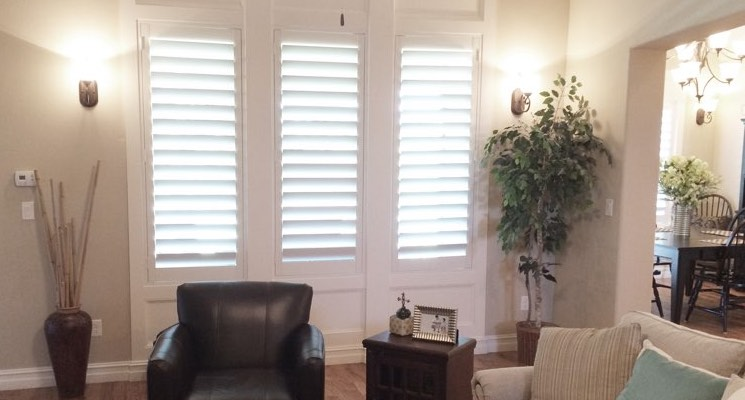 Tampa family room white shutters
